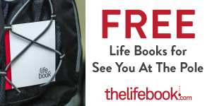 The Life Book